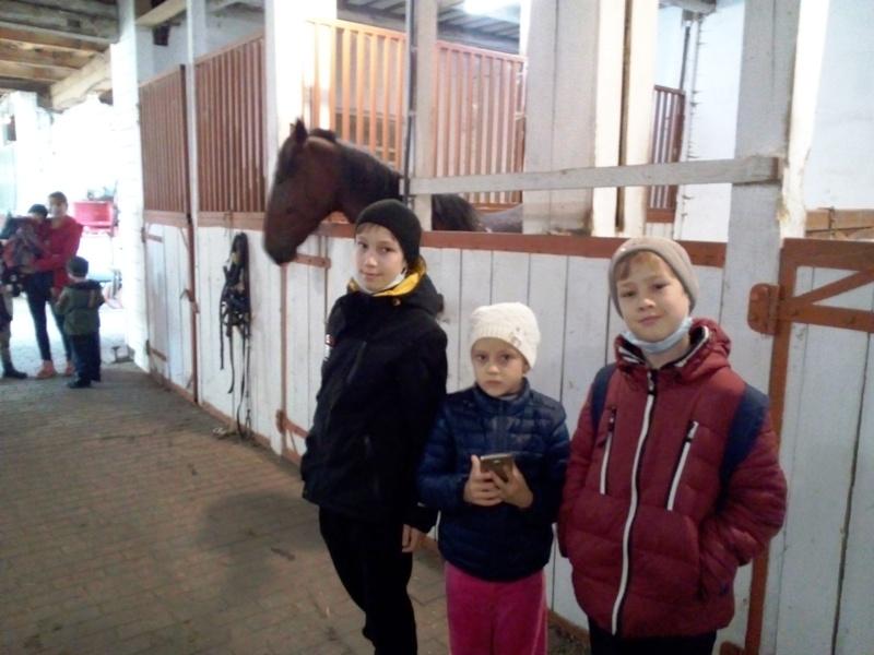 В конюшне живут лошади